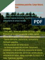 UNIDAD VI. Agroecosistemas pastoriles_ Campo Natural. Objetivos específicos_
