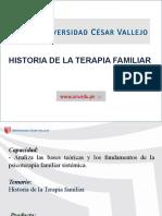 Clase 01 - TERAPIA FAMILIAR (1)