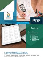AULA - PRINCÍPIOS DO PROCESSO PENAL (PARTE 1).pdf