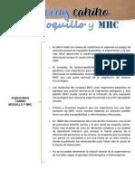 JASSO ANDREA PARVOVIRUS CANINO Y MOQUILLO MHC