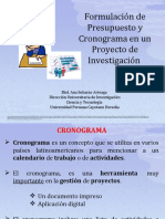 Presentacion OPS Cronograma y Presupuesto.ppt