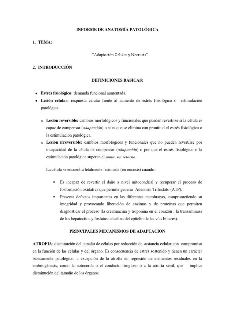 INFORME DE ANATOMÍA PATOLÓGICA1