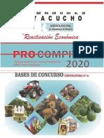 BASES_PROCOMPITE_REGIONAL_AYACUCHO_2020 IMPRIMIR (3)-convertido - copia