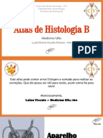 Sist. Reprodutor Masculino - Luíza Vicente 104.pdf