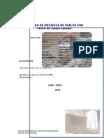 Informe EMS Surquillo F 2