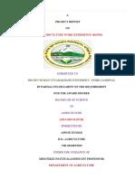 ashok report.docx