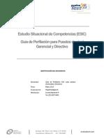 ESIC-Guia de Perfilacion para G y D