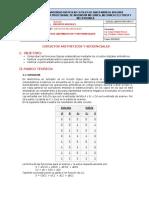 Guia Practica 4.pdf