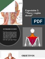 Exposición 2 - Nuca y región dorsal- DOCTOR AGÜERO