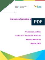 20200813015325608-Pruebas_formativas_con_perfiles_6to_MULTIAREA.pdf