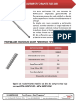 Autoperforante R25 DSI_16_10.pdf