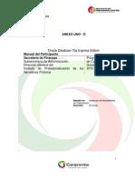 38429936-Manual-Oracle-10g