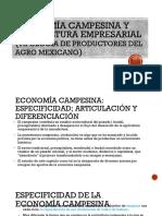Economía campesina y agricultura empresarial (tipología de (1)