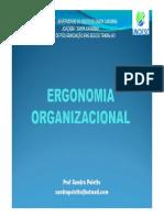 aula 5 ergonomia organizacional [Modo de Compatibilidade]