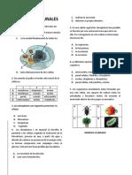 CIENCIAS NATURALES  -GRADO 5