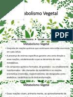 Aula de Farmacognosia Metabolismo Vegetal