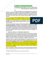 TEORIAS CURRICULO Y CONCEPCIONES CURRICULARE