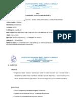 POA comision tecnico pedagogica
