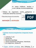 17092018191253Aula-02 - Sistema Linfático - Imunologia - academico.pdf