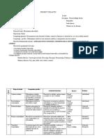 proiect clasa a VI-A.doc