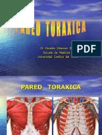 11-Pared Toráxica. Músculos, Espacios Intercostales y Región mamaria