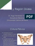 Cadera y Región Glútea