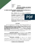 DEMANDACORREGIDA.docx