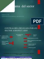 Organigrama  del sector agrario.pptx