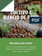 Plantio e Manejo de Pancs