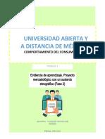 ICDC_U1_EA_IVG.docx
