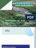 ivu2019v4-191125004402.pdf