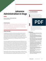 FPTP_Intranasal Naloxone Administration in Dogs