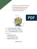 PRODUCCION DE CERVEZA ARTESANAL bloque.pdf