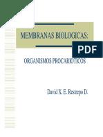 membranas presentación