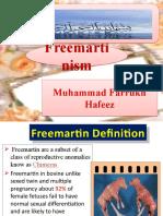 FreeMartinism