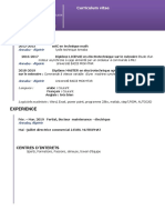 27-modele-cv-contemporain-violet-97-2003 (2)-converti