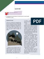 5-PARA LEER Y COMPRENDER.docx
