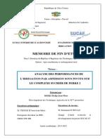 ANALYSE DES PERFORMANCES DE L'IRRIGATION PAR ASPERSION SOUS PIVOTS SUR LE COMPLEXE SUCRIER DE FERKE 2