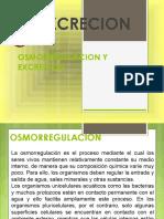 osmoregulacionyexcrecion.pdf