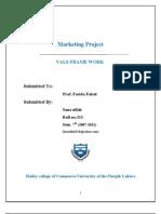 VALS Frame Work in Pakistan by Sanaullah313