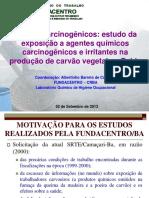 Seminário I PPG-Projeto Carvão PRODUTOS QUE CAUSAM CANCER.pdf