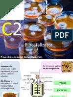 Curs-2-Biocatalizator