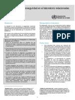 WHO-WPE-GIH-2020.3-spa.pdf