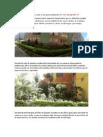 EDUCACION AMBIENTAL (2)