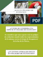Anexo 10, sesion 5- ANIMALES EN PELIGRO DE EXTICIÓN.pptx