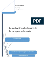 Patho_Affections_bulleuses_Ykhlef