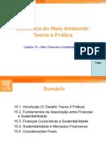 MAY_Slides_Capítulo_15_Setor Financeiro e Sustentabilidade