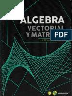 Libro de Álgebra Vectorial y Matrices Luis Alonso Arenívar.pdf