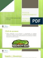 Modelo presentación pitch de emprendimiento.pptx