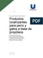 Productos_cicatrizantes_para_perro_y_gat.docx